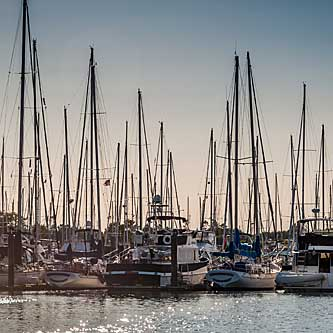 Daytrips Point Roberts Washington