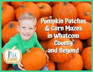2020 Pumpkin Patches
