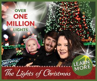 2019 Lights Of Christmas