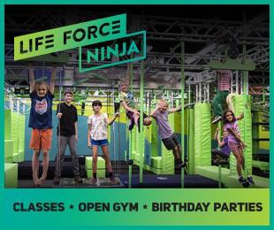 Life Force Ninja Fall 2019